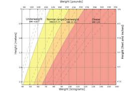 Acsm Waist Circumference Chart What Your Waistline Says About Your Health The Active Times