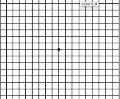 Amsler Chart Working Distance What Is An Amsler Grid Texas Retina Associates