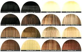 28 Albums Of Loreal Ash Blonde Hair Color Chart Explore