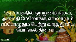 2019 Happy Pongal Festival Wishes Messages Greetings With Images