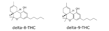 Credit to Brian Peterson of CBDOilUsers.com. Two chemical structures are drawn out with delta-8 thc on the left and delta-9 tetrahydrocannabinol