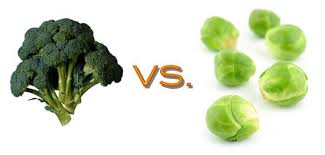 now featured on many a hip menu brussels sprouts and broccoli are por dishes that have many diners licking their lips but between the two