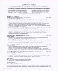Strategic Partnership Agreement Template With Best Of Sample Resume