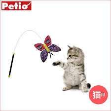 an petio sent to the austrian delicate erfly dragonfly wire rod funny cat funny cat