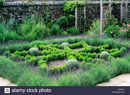 Small Picture Herb knot garden lavender box hedges gardens herbs hedge gardens