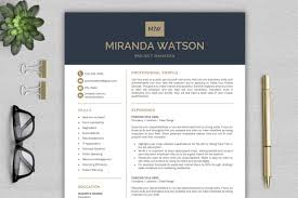 Resume Template For Word Cv Template Professional Resume