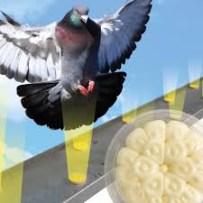 optical gel a multi sensory bird repellent birds see dishes of fire and avoid them immediately