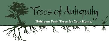 Tennessee Wholesale Nursery  Freedom Tree FarmsNon Gmo Fruit Trees For Sale
