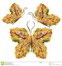 Designs Made From Leaves Floral Butterfly Made Of Dry Leaves And Flowers Stock Photo