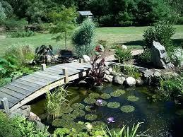 garden pond supplies. How To Make A Garden Pond Build In Your Supplies