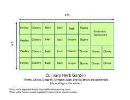 Small Picture Culinary Herb Garden Design Physicians Council