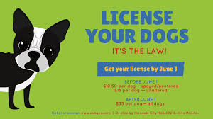 1st Is Get News Friday June Day Prices Licenses At Dog Last To Reduced aS7zw