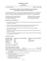 Best Ideas of Senior Level Resume Samples On Cover Letter