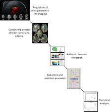 Mri Sequences Chart The Cureus Journal Of Medical Science Peer Reviewed Open