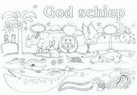 Kleurplaat Schepping Schepping Bijbelknutselwerk Bijbel