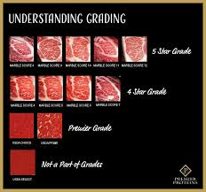 Japanese Beef Grading Chart Beef Premier Proteins