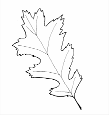 Small Picture Coloring Page Free Download Oak Oak Leaf Stencils Leaf Stencils