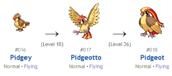 Pidgey Evolution Chart Fire Red Pokemon Life