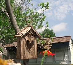 Small Picture 49 best Butterfly Hummingbird garden images on Pinterest