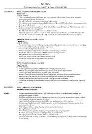 Sample Resume For Banking Operations Banking Operations Resume Samples Velvet Jobs 8