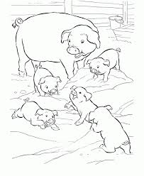 Small Picture Baby Pig Colouring Pages Baby Pig Coloring Pages In Coloring Page