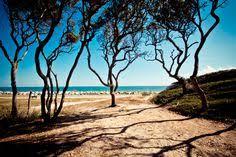 Kure Beach Tide Chart 46 Best Kure Beach Nc Images Kure Beach Nc Kure Beach Beach