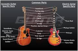 View Anatomy Of Guitar  Pics