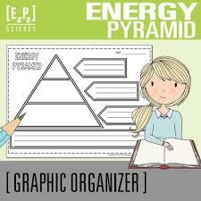 Ecosystem Pyramid Chart Energy Pyramid Diagram Science Graphic Organizer