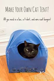 diy cat tent bed all you need is a box a t shirt