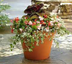 Small Picture Garden Design Garden Design with Container Gardening u Part