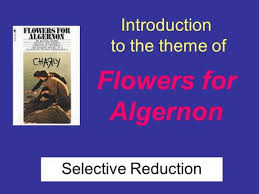 introduction to flowers for algernon selective reduction ppt introduction to the theme of flowers for algernon