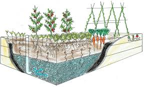 self watering garden bed. Fine Bed Wicking Beds Use Capillary Action To Water The Plants From A Watertight  Reservoir In On Self Watering Garden Bed