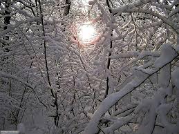 Risultati immagini per immagini belle di notti invernali con neve