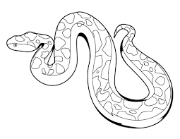Snake Coloring Sheet - Cypru.hamsaa.co