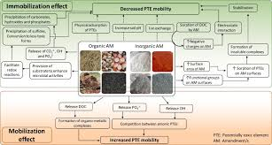From the national institute for occupational safety and health. Soil Amendments For Immobilization Of Potentially Toxic Elements In Contaminated Soils A Critical Review Sciencedirect