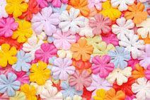 Paper Flower Punches Giant Paper Punch Flowers Lovetoknow