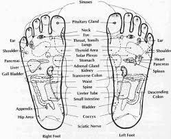 Leg Acupressure Points Chart Benefits Of Acupressure Points Acupressure Points In Hand