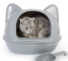Best litter box for odor control includes those with a hood
