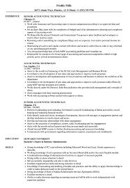 Accounting Technician Resume Samples | Velvet Jobs