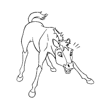 Small Picture To Print Spirit Stallion Of The Cimarron Coloring Pages 30 In