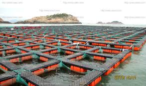 option Salmon Fish Farms With Floating Cages