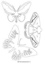 Disegni Con Farfalle Per Bambini Com Con Immagini Da Colorare Di