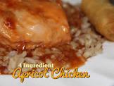 apricot chicken  4 ingredients