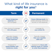 Whole life is a type of permanent insurance. Term Vs Permanent Life Insurance Aaa Life Insurance Company