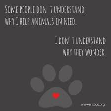 animal rescue quotes and sayings. Some People Understand Why Help Animals In Need They Wonder On Animal Rescue Quotes And Sayings Pinterest