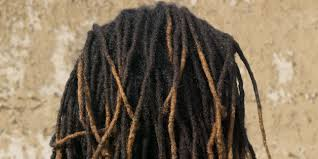 Rastafarian Student Reportedly Punished At School Over Dreadlocks Extraordinary Rastafarian