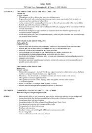 Customer Care Executive Resume Sample Customer Care Executive Resume Samples Velvet Jobs 9