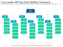 Four Levels Hr Org Chart Staffing Training And Compensation