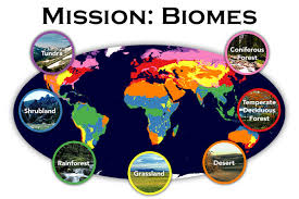Fill In The Chart With Information About Each Biome Mission Biomes