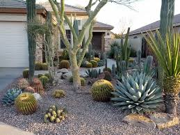 Small Picture 10 best Hermosos Jardines de Cactus images on Pinterest Desert